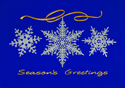 Frosted & Fancy Holiday Cards